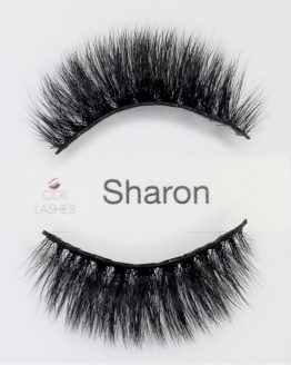 Sharon Lashes Cexi Lashes Chicago